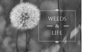 Weeds & Life