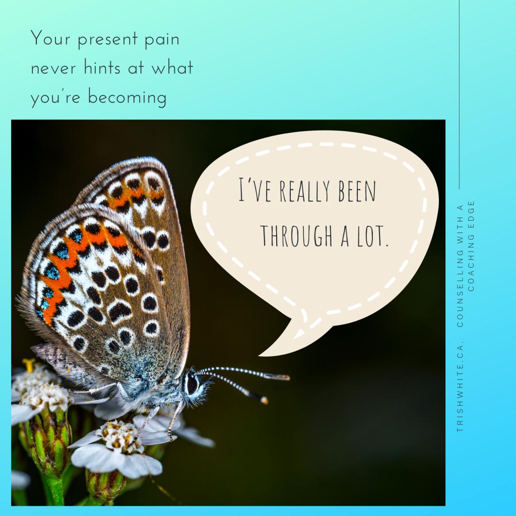 Betrayal Trauma Archives - Trish White Counselling
